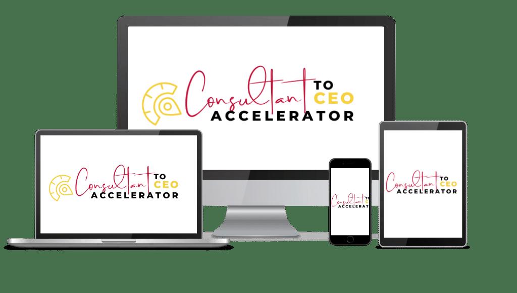 Consultant to CEO Accelerator Program